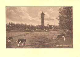 Bergen Op Zoom Weide Met Watertoren 1926 RY36366 - Bergen Op Zoom