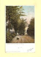 Bergen Op Zoom Dubbele Dreef 1903 RY33983 - Bergen Op Zoom