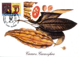 15199061 BE 19990605 Eupen; Chocolat Belge; Culture, Fève De Cacao; CM Cob2825 - Ernährung