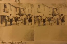 PORNIC ? Photo Stéréoscopique De 1907 - Retour Des Champs (Attention Pas Carte Postale) - Pornic