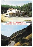 SALM CHATEAU - Vielsam - Auberge Des Grands Prés - Edition Lander, Eupen N° 7032 - Renault  R4 4L - Vielsalm