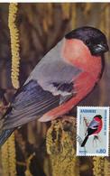 Carte Maximum Oiseau  Bouvreuil 1974  Photo Fatras Bird - Andorra