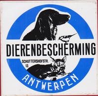 Animal Protection Dierenbescherming Sticker Antwerpen Autocollant Aufkleber Hond Poes Chien Chat Cat Dog - Stickers