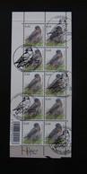 Buzin Velletje Houtduif 3390 Afgestempeld + Gehandtekend - 1985-.. Birds (Buzin)