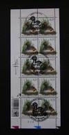 Buzin Velletje Geoorde Fuut 3546 Afgestempeld + Gehandtekend - 1985-.. Birds (Buzin)