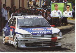 Championnat De France Des Rallyes 1995  -  Gilles Et Hervé Panizzi -  Peugeot 306 Maxi  -  CP - Rally