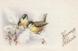 278 - MIGNONETTE MIGNONNETTE HEUREUSE ANNEE . OISEAUX FLEURS PLUMES - Neujahr