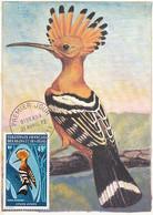 Maximum Card  Huppe Afars Et Issas  First Day 1972 Bird - Djibouti