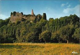 FALAEN - Ruines De Montaigle - N'a Pas Circulé - Anhée