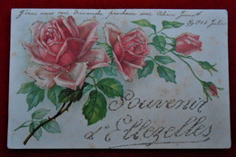 CPA 1904 Souvenir D'Ellezelles - Ellezelles