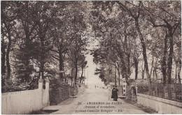 33  Andernos Les Bains - Bassin D'arcachon    -  Avenue Camille Rongier - Andernos-les-Bains