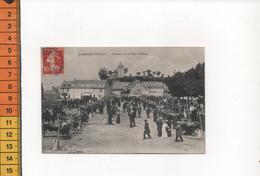 12 LAGUIOLE AVEYRON CONCOURS DE LA RACE D AUBRAC En 1913  DOUZIER - Laguiole