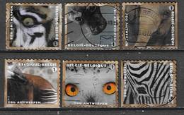 Belgique Belgium Antwerp Zoo Obl - Used Stamps