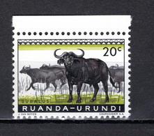 RUANDA-URUNDI   N° 206   NEUF SANS CHARNIERE   COTE 0.15€   BUFFLE ANIMAUX - 1948-61: Neufs