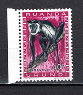 RUANDA-URUNDI   N° 207   NEUF SANS CHARNIERE   COTE 0.15€   SINGE ANIMAUX - 1948-61: Neufs