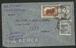 ARGENTINE Pli Par Avion Pour Lyon Via AIR FRANCE En 1940 (voir Description) - Oblitérés
