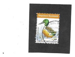 4537 Slobeend  Aangetekend Tarief  Gestempeld - 1985-.. Pájaros (Buzin)