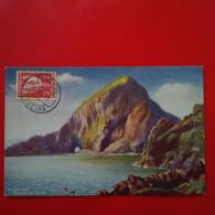 MADEIRA BOARD R.M.S.P AMAZON - Madeira