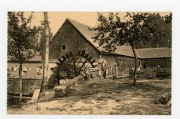 D739 - Diepenbeek Sapitelmolen Watermolen - Molen - Moulin - Mill - Mühle - - Diepenbeek