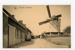 D741 Sottegem Erwetegem - Molen - Moulin - Mill - Mühle - - Otros