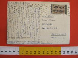 SKCC9 SCOUTS SCOUTING SCAUTISMO - 1963 GRECIA HELLAS BADEN-POWELL CARD COSTUMI TIPICI BODY GUARD ROYALE - Briefe U. Dokumente