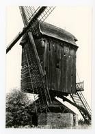 D761 - Schaffen - Grootformaatkaart 10x15cm - Molen - Moulin - Mill - Mühle - - Other