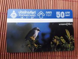 Phonecard Bird Used Rare - Otros