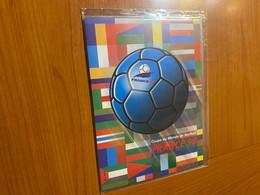 France -2 Blocs Coupe Du Monde De Football France 1998 ( Voire Scan ) - Ongebruikt