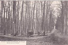 [78] Yvelines  St. Germain En Laye  Forêts De St Germain En Laye Bucherons Au Travail - St. Germain En Laye