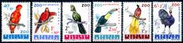 """BELGIQUE  1962  MNH   -   """" OISEAUX / BIRDS """"   -  6  VAL. - Zonder Classificatie"""