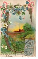 Illustrée Gaufrée, Dorée . ALPHABET ART NOUVEAU DES FLEURS ET PAYSAGES . Lettre C - Flowers
