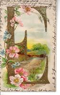 Illustrée Gaufrée, Dorée . ALPHABET ART NOUVEAU DES FLEURS ET PAYSAGES . Lettre E - Flowers