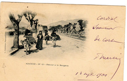 20 CORSE AJACCIO N°15 RETOUR DE LA BERGERIE - Ajaccio