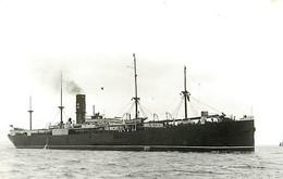 471 PHOTO BATEAU LE ESSEX   DE 1902 PREFIXE S.S DE ?T - FORMAT C.P.A N° B 471 - Schiffe