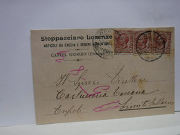 CASTEL GIORGIO  -- PERUGIA  -- ARMI - MUNIZIONI - POLVERI PIRICHE E DA CACCIA --  STOPPACCIARO LORENZO - Perugia