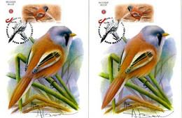 A.BUZIN  MESANGE A MOUSTACHE TIM. PERSO CACHET METTET 16/03/2019 - 1985-.. Birds (Buzin)