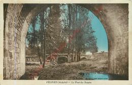 07.  FELINES .  Le Pont Des Soupirs . - Altri Comuni