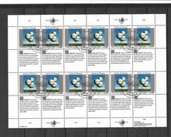 ONU Genève Feuillet Des N°249 à 254 X  4 Droits De L'Homme Cachets Premier Jour 11/06/1993 TB  Voir Scans Soldé    ! ! ! - Cartas