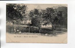 LES AVANTS  SAISON DES NARCISSES - VD Vaud
