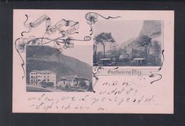 Italien Italia AK Feifers Gasthaus Zur Pflög 1903 - Otras Ciudades