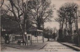 VAL D'OISE-Montmorency-Boulevard D'Andilly Et L'Arbre De La Liberté - CM 57 - Montmorency