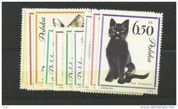 1964 MNH Poland, Polen, Pologne, Postfris - Nuevos