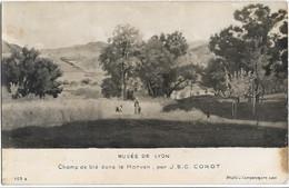 CP Photo - Musée De LYON - Champ De Blé Dans Le MORVAN, Par J.B.C. Corot (photo Campanogara J.) - Museum