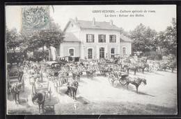CPA 77 - Grisy-Suisnes, Culture Spéciale De Roses - La Gare - Retour Des Halles - Autres Communes
