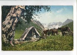 3029042 Russia NORTH Buryat & HORSES KAPSHALA River Vintage PC - Asien