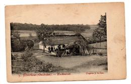 Meerhout (omstreken): Haekenrode - Meerhout