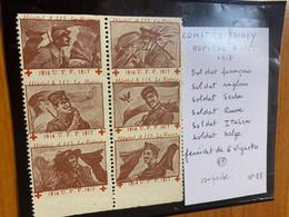 Bloc De 6 Vignettes -hôpital A115 Le Raincy 1916 - Red Cross