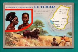 """LES COLONIES FRANÇAISES . """" LE TCHAD """" . PUBLICITÉ CIRAGE LION NOIR - Réf. N°11151 - - History"""