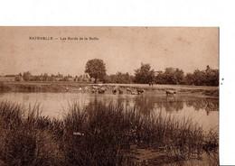 """RATENELLE. -  Les Bords De La Seille. """" Troupeau De Vaches""""... RARE. ETAT NEUF. Voir SCANS Recto-verso - Other Municipalities"""