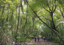 2 AK American Samoa * 2 Ansichten Der Insel Swains - Ein Atoll Im Südpazifik - Es Gehört Zu Amerikanisch Samoa * - American Samoa